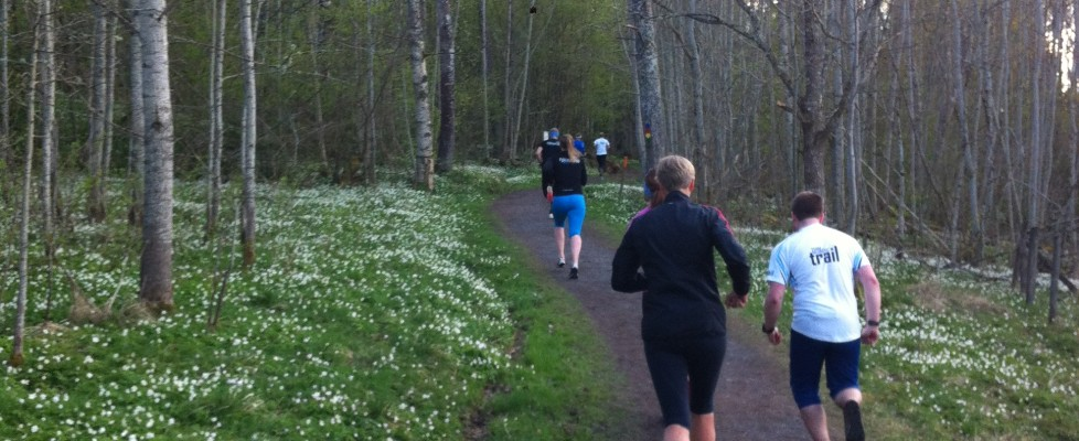 Nybörjarkurs med Team Nordic Trail!